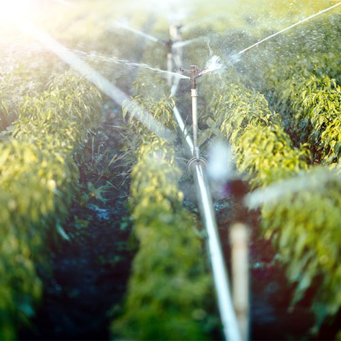 irrigation-system-in-function-VHE2QP4_resize